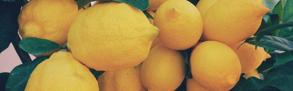 exotic lemon fermented wine base