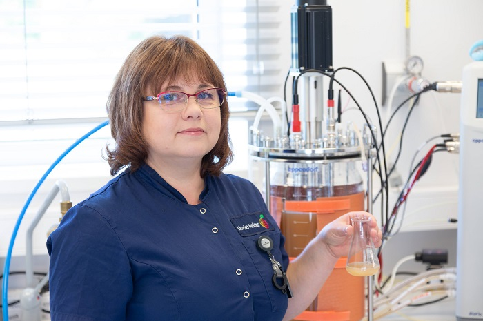 High quality Lab Linda Nektar